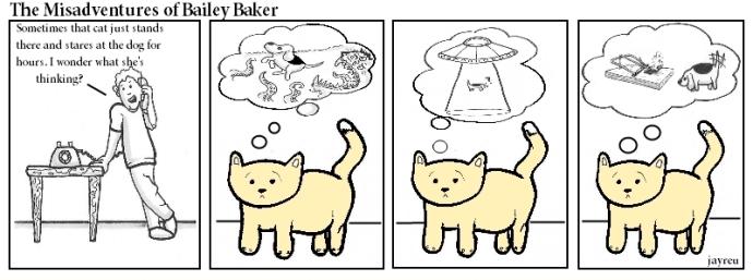 Cat Daydream